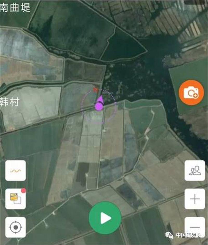 """""""中华白鹤保护地·白洋淀""""志愿者巡护发现提防上出现坍塌"""