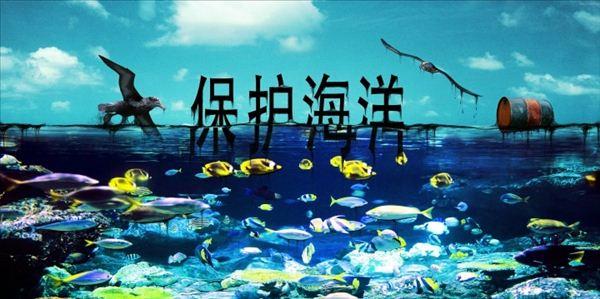 保护海洋,中国绿发会在行动!- 中国生物多样性保护与