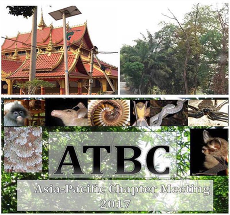 atbc.png