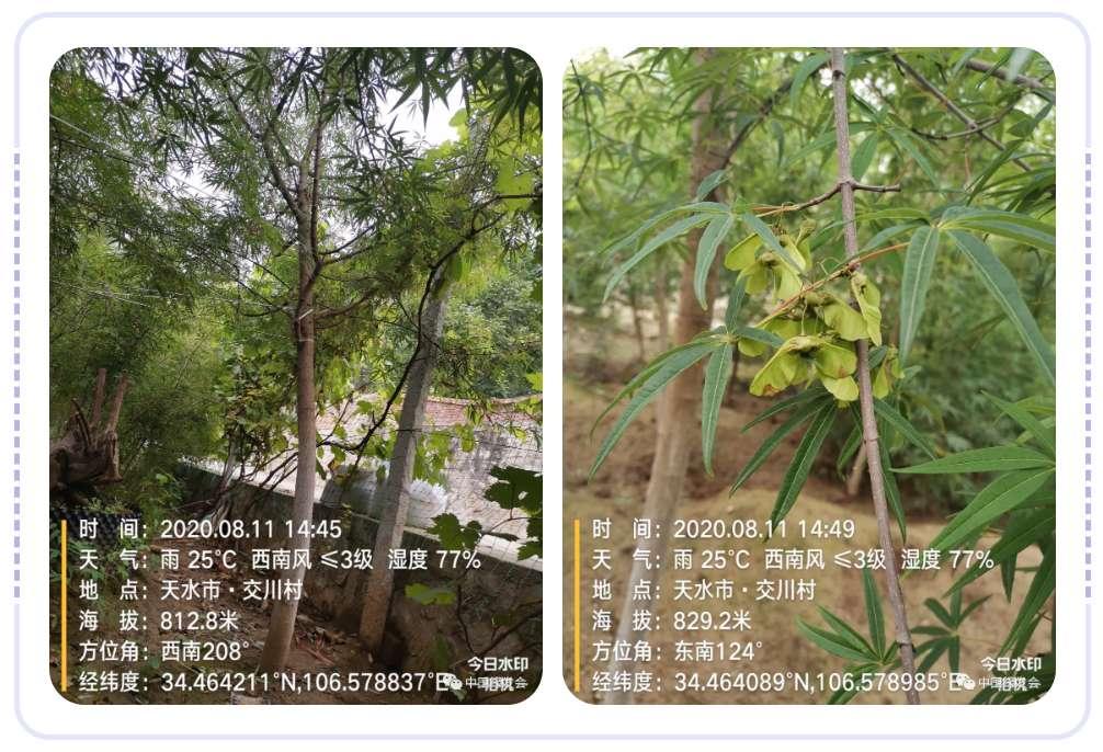 微信图片_20200820171402.jpg
