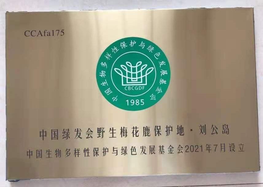 """中国绿发会野生梅花鹿保护地?刘公岛""""10.jpg"""